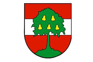 Wappen der Stadt Dornbirn