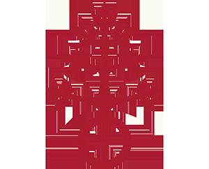 Logo Dominikus-Ringeisen-Werk